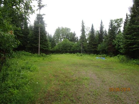 Lot for sale in Clarendon, Outaouais, Chemin  Shreiner, 21753980 - Centris.ca