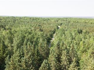 Terre à vendre à Newport, Estrie, Chemin d'Island Brook, 19843762 - Centris.ca
