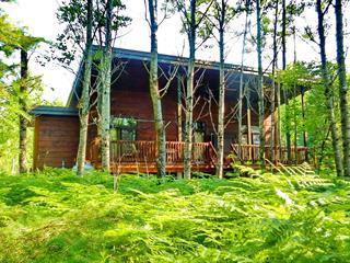 Cottage for sale in Péribonka, Saguenay/Lac-Saint-Jean, 362, Chemin du Réservoir, 12824141 - Centris.ca