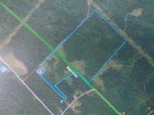 Terre à vendre à Saint-Luc-de-Bellechasse, Chaudière-Appalaches, Chemin  Saint-Abdon, 13581407 - Centris