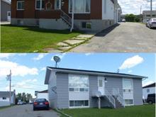Quintuplex à vendre à Ville-Marie, Abitibi-Témiscamingue, 10, Rue  Létourneau, 9171696 - Centris.ca