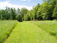 Terrain à vendre à Chichester, Outaouais, 1549, Chemin de Chapeau-Sheenboro, 11021661 - Centris.ca
