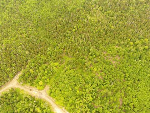 Land for sale in Sainte-Marguerite-du-Lac-Masson, Laurentides, Rue du Guetteur, 12719284 - Centris.ca