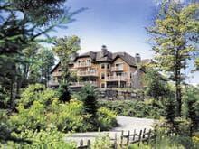 Condo à vendre à Mont-Tremblant, Laurentides, 206, Rue du Mont-Plaisant, app. 3, 18989014 - Centris.ca