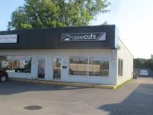 Local commercial à louer à Vaudreuil-Dorion, Montérégie, 492, Avenue  Saint-Charles, 17161539 - Centris.ca