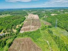 Hobby farm for sale in Papineauville, Outaouais, 956, Route  321, 9263812 - Centris.ca