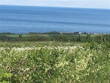 Terre à vendre à Sainte-Anne-des-Monts, Gaspésie/Îles-de-la-Madeleine, Rang 2 Cap-Chat, 27664017 - Centris.ca