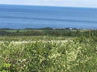 Land for sale in Sainte-Anne-des-Monts, Gaspésie/Îles-de-la-Madeleine, Rang 2 Cap-Chat, 27664017 - Centris.ca