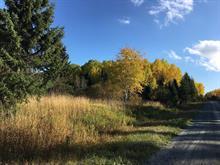 Terrain à vendre à Rouyn-Noranda, Abitibi-Témiscamingue, Montée du Lac, 28836079 - Centris.ca