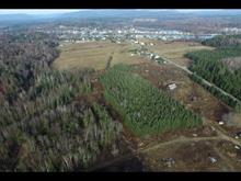 Terre à vendre à Notre-Dame-du-Laus, Laurentides, 99, Chemin de Val-Ombreuse, 20529300 - Centris.ca