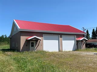 Commercial building for sale in Val-d'Or, Abitibi-Témiscamingue, 484, Route  111, 16878439 - Centris.ca