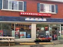 Commerce à vendre à Fleurimont (Sherbrooke), Estrie, 1199, Rue du Conseil, 17153885 - Centris.ca