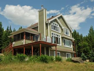 House for sale in Petite-Rivière-Saint-François, Capitale-Nationale, 25, Chemin  Savard, 10502016 - Centris.ca