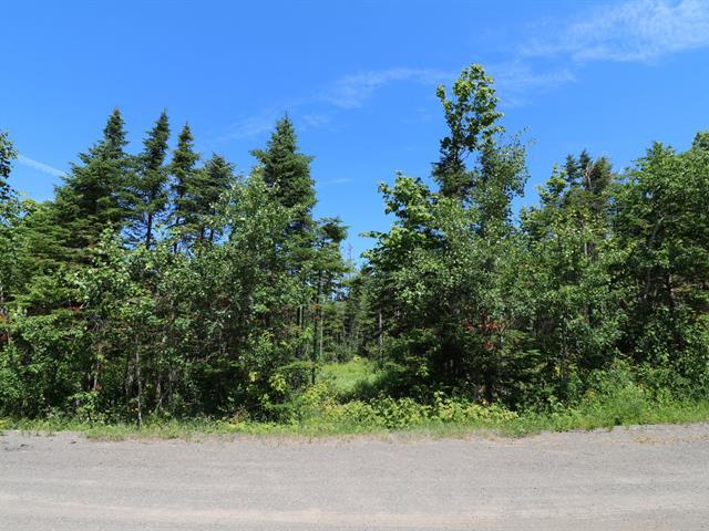 Terrain à vendre à Rivière-Ouelle, Bas-Saint-Laurent, 113, Chemin  Maurice-Proulx, 18525421 - Centris.ca