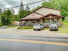 Commercial building for sale in Val-des-Bois, Outaouais, 560, Route  309, 26377170 - Centris.ca