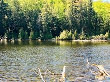 Lot for sale in Wentworth-Nord, Laurentides, 1950, Chemin  Mario, 26143037 - Centris.ca