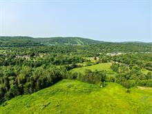 Lot for sale in Piedmont, Laurentides, Chemin de la Rivière, 24327652 - Centris.ca
