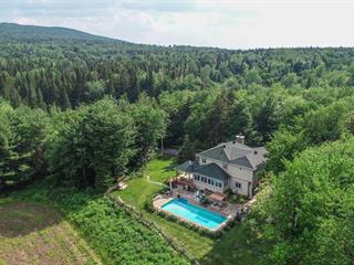 Maison à vendre à Bolton-Ouest, Montérégie, 49, Chemin  Mountain, 13149050 - Centris.ca