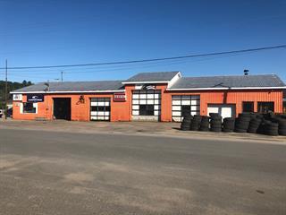Bâtisse commerciale à vendre à Mansfield-et-Pontefract, Outaouais, 227, Rue  Principale, 15172896 - Centris.ca