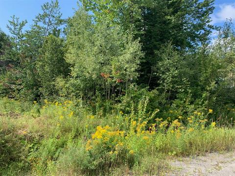 Lot for sale in Stoneham-et-Tewkesbury, Capitale-Nationale, 4, Chemin des Autours, 14629554 - Centris.ca