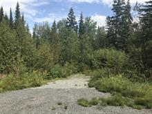 Lot for sale in Rouyn-Noranda, Abitibi-Témiscamingue, Rang  Lavigne, 17828561 - Centris.ca