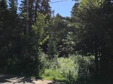 Terrain à vendre à Val-David, Laurentides, Rue  Sainte-Marie, 20263545 - Centris.ca