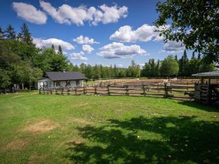 Hobby farm for sale in Sainte-Catherine-de-la-Jacques-Cartier, Capitale-Nationale, 145F, Chemin des Ormeaux, 26678323 - Centris.ca