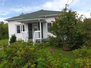 House for sale in Windsor, Estrie, 251, Rue  Ambroise-Dearden, 13262940 - Centris.ca