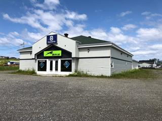 Bâtisse commerciale à vendre à Sainte-Anne-des-Monts, Gaspésie/Îles-de-la-Madeleine, 244, boulevard  Sainte-Anne Est, 19413253 - Centris.ca