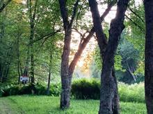 Terre à vendre à Saint-Jacques-de-Leeds, Chaudière-Appalaches, 64, Route de la Plage-Vachon, 14409457 - Centris.ca