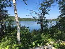 Terrain à vendre à Alma, Saguenay/Lac-Saint-Jean, Chemin du Pic, 17687600 - Centris.ca