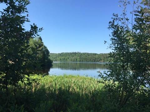 Lot for sale in Alma, Saguenay/Lac-Saint-Jean, Chemin du Pic, 13284734 - Centris.ca