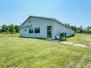 Bâtisse commerciale à vendre à Notre-Dame-de-la-Salette, Outaouais, 32, Rue des Saules, 24779092 - Centris.ca
