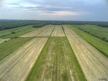 Terre à vendre à Saint-Germain-de-Grantham, Centre-du-Québec, 203Z, 10e Rang, 21821147 - Centris.ca