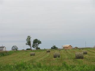Terrain à vendre à Bonaventure, Gaspésie/Îles-de-la-Madeleine, Rue  Bourmer, 25022324 - Centris.ca