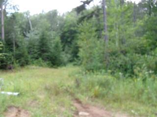 Terre à vendre à Saint-Alphonse-Rodriguez, Lanaudière, Rue  Rosaire, 25486552 - Centris.ca