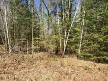 Terrain à vendre à Potton, Estrie, Chemin de Leadville, 15086327 - Centris.ca