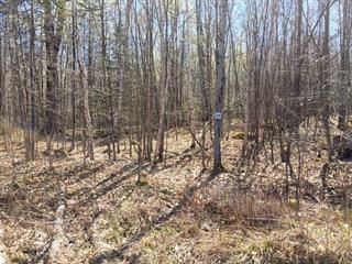 Terrain à vendre à Potton, Estrie, Chemin des Faisans, 11241600 - Centris.ca