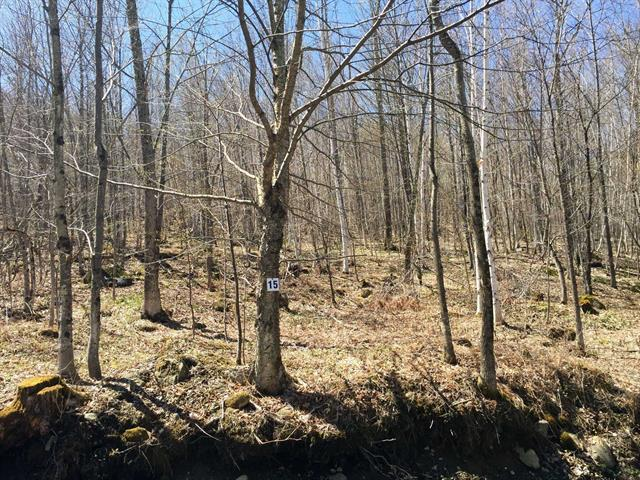 Lot for sale in Potton, Estrie, Chemin  Smart, 17325367 - Centris.ca