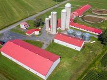 Farm for sale in Marieville, Montérégie, 675Z, Chemin de la Branche-du-Rapide, 23082645 - Centris.ca