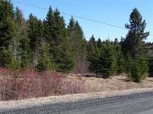 Terrain à vendre à Saint-Herménégilde, Estrie, Chemin  Lebel, 14174960 - Centris.ca