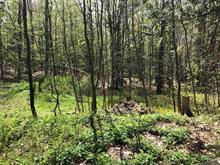 Terre à vendre à Sutton, Montérégie, 693Z, Chemin  Schweizer, 23419572 - Centris.ca
