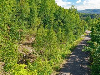 Lot for sale in Val-David, Laurentides, Rue  Diana, 17360226 - Centris.ca