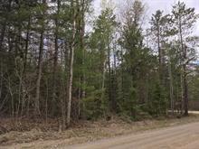 Terrain à vendre à L'Île-du-Grand-Calumet, Outaouais, Chemin  Côtes-Jaunes, 17255467 - Centris.ca