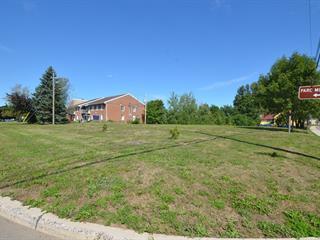 Terrain à vendre à Saint-Roch-des-Aulnaies, Chaudière-Appalaches, 1022, Route de la Seigneurie, 18344088 - Centris.ca
