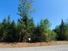 Terrain à vendre à Sainte-Agathe-des-Monts, Laurentides, 26, Route  329 Nord, 14567065 - Centris.ca