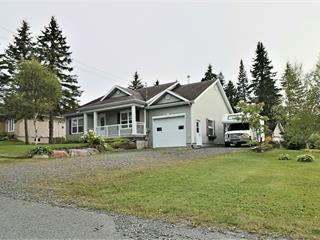 Maison à vendre à Lac-Etchemin, Chaudière-Appalaches, 17, Rue du Boisé, 19196580 - Centris.ca