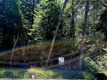 Terrain à vendre à Sainte-Agathe-des-Monts, Laurentides, 3, Route  329 Nord, 15239244 - Centris.ca
