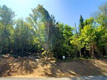 Terrain à vendre à Sainte-Agathe-des-Monts, Laurentides, 12, Route  329 Nord, 17568570 - Centris.ca