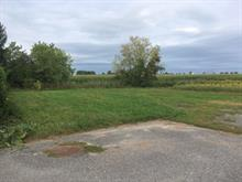 Lot for sale in Upton, Montérégie, Rue  Dauphinais, 24646531 - Centris.ca